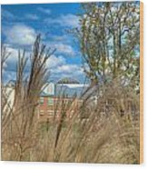 Founders Hall Through The Grasses Wood Print
