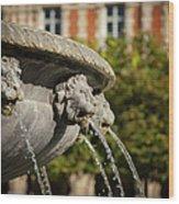 Fountain - Place Des Vosges Wood Print