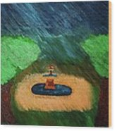 Fountain In The Midst Wood Print
