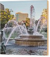 Fountain In The Pink Wood Print