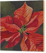 Franci's Poinsettia Wood Print