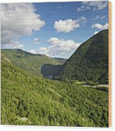Franconia Notch State Park - White Mountains New Hampshire Usa  Wood Print