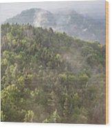 Franconia Notch State Park - White Mountains Nh Usa Wood Print