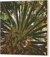 Fresh Cut Palm 2 Wood Print