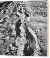 fresh footprints crossing deep snow in field towards small rural village of Forget Saskatchewan Cana Wood Print by Joe Fox