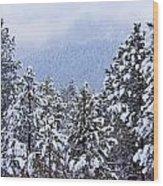 Fresh Snow Wood Print