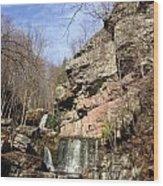 Fresh Water Streams Around Poconos Pa America Usa  Wood Print
