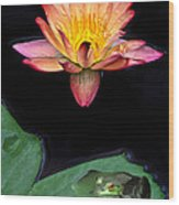 Frog And Waterlily Wood Print