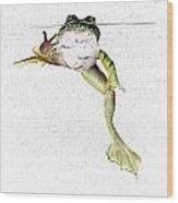 Frog On Waterline Wood Print