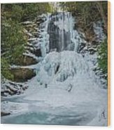 Frozen Catawba Wood Print