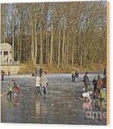 Frozen Lake Krefeld Germany. Wood Print by David Davies