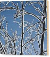 Frozen Tree Branches   In  Winter Wood Print
