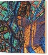 Gabbro Wood Print