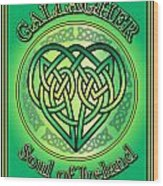Gallagher Soul Of Ireland Wood Print