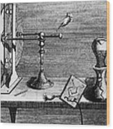 Galvani: Galvanism Wood Print