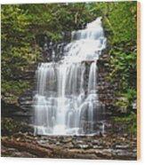 Ganoga Falls Wood Print