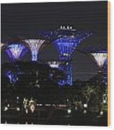 Gardens By The Bay Wood Print
