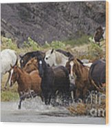 Gaucho With Herd Of Horses Wood Print