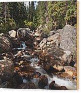 Geneva Falls Wood Print
