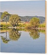 George Town Lake Reflections Wood Print