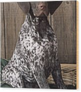 German Short-haired Pointer Dog Wood Print