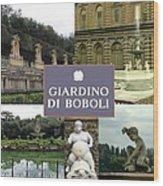 Giardino Di Boboli Wood Print