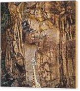 Giraffe Against The Rocks Color Wood Print