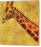 Giraffe Painting Wood Print by Dan Sproul