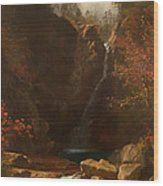 Glen Ellis Falls Wood Print