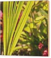 Glowing Iris Leaves 1 Wood Print