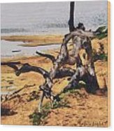 Gnarly Tree Wood Print by Barbara Snyder