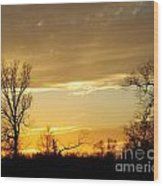Golden Sunset 61 Wood Print