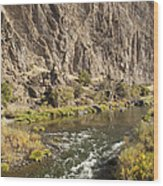 Goose Rock Above John Day River Oregon Wood Print