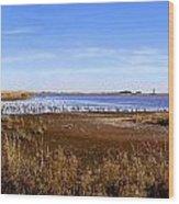 Gordons Pond Wood Print