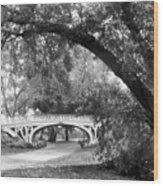 Gothic Bridge Wood Print