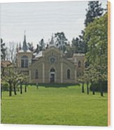 Gothic House Wood Print