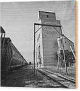 grain elevator and old train track with grain railcars leader Saskatchewan Canada Wood Print