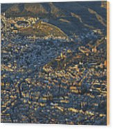 Granada And The Alhambra Wood Print
