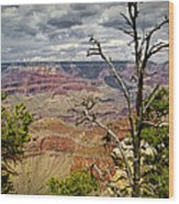 Grand Canyon View From The South Rim Wood Print