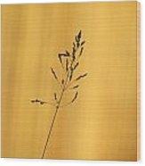 Grass Silhouette Wood Print