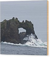 Great Arch On The Farallon Islands Wood Print