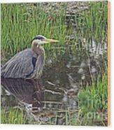 Great Blue Heron At Deboville Slough 2 Wood Print