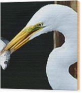 Great Catch Wood Print