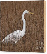1- Great Egret Wood Print