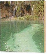 Green Lake Wood Print