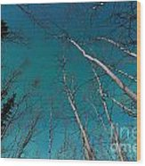 Green Swirls Of Northern Lights Over Boreal Forest Wood Print