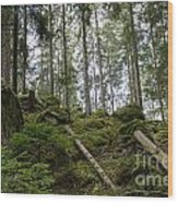 Green Untouched Forest Wood Print