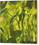 Greenery Wood Print