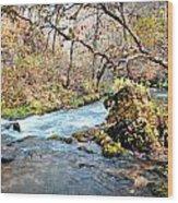 Greer Spring  Wood Print