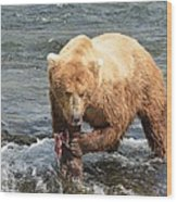 Grizzly Bear Salmon Fishing Wood Print